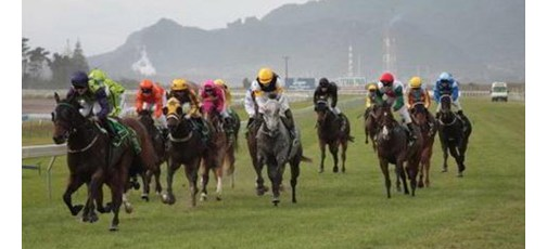 NZ Thoroughbred Racing meetings