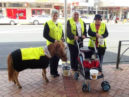Comet, a St John Outreach Therapy Pet, draws attention in Manurewa to the St John Annual Appeal 2012
